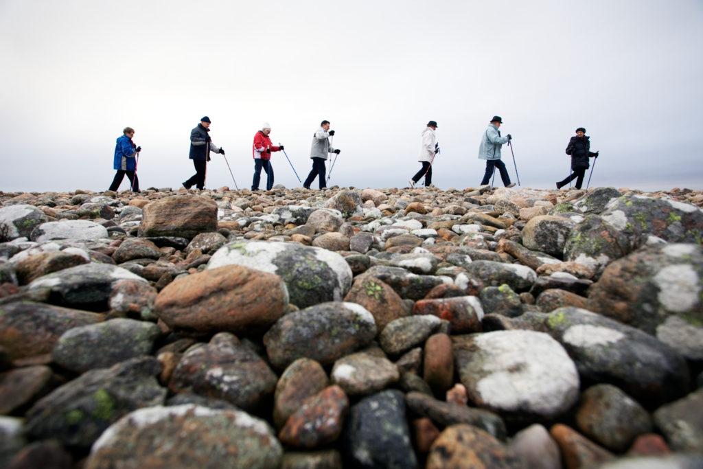 Promenade nordique