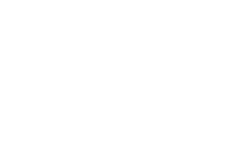 Logo de la Vasaloppet