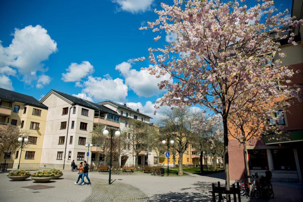 Banlieue de Stockholm, Enskededalen
