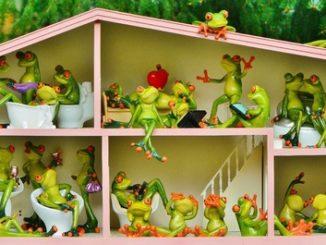 Maison de poupée peuplée de grenouilles