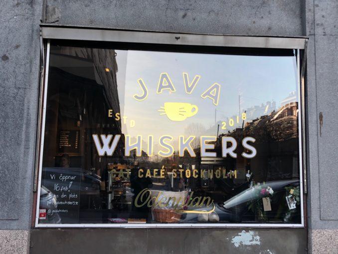 Devanture du café Java Whiskers