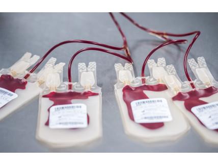 Poches de sang