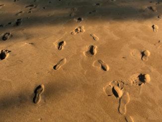 Empreintes de pieds dans le sable