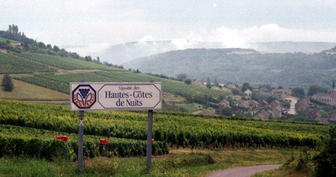 Vignoble des Hautes-Côtes de Nuits