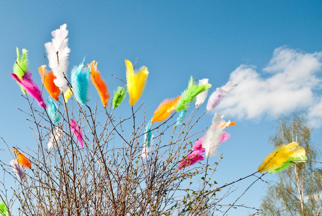 Branches ornée de plumes de Pâques multicolores