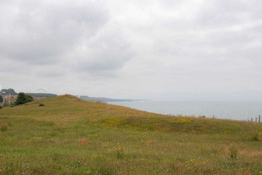 Ales stenar, over the cliff